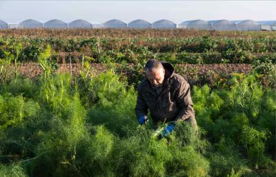 Agroécologie en France